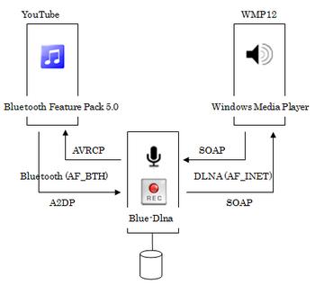 Blue-Dlna_sample_01.png